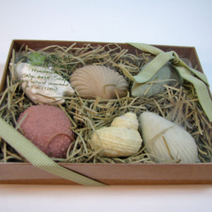 Inner Ocean's Guest Soap Sampler Box of Seaweed Soap